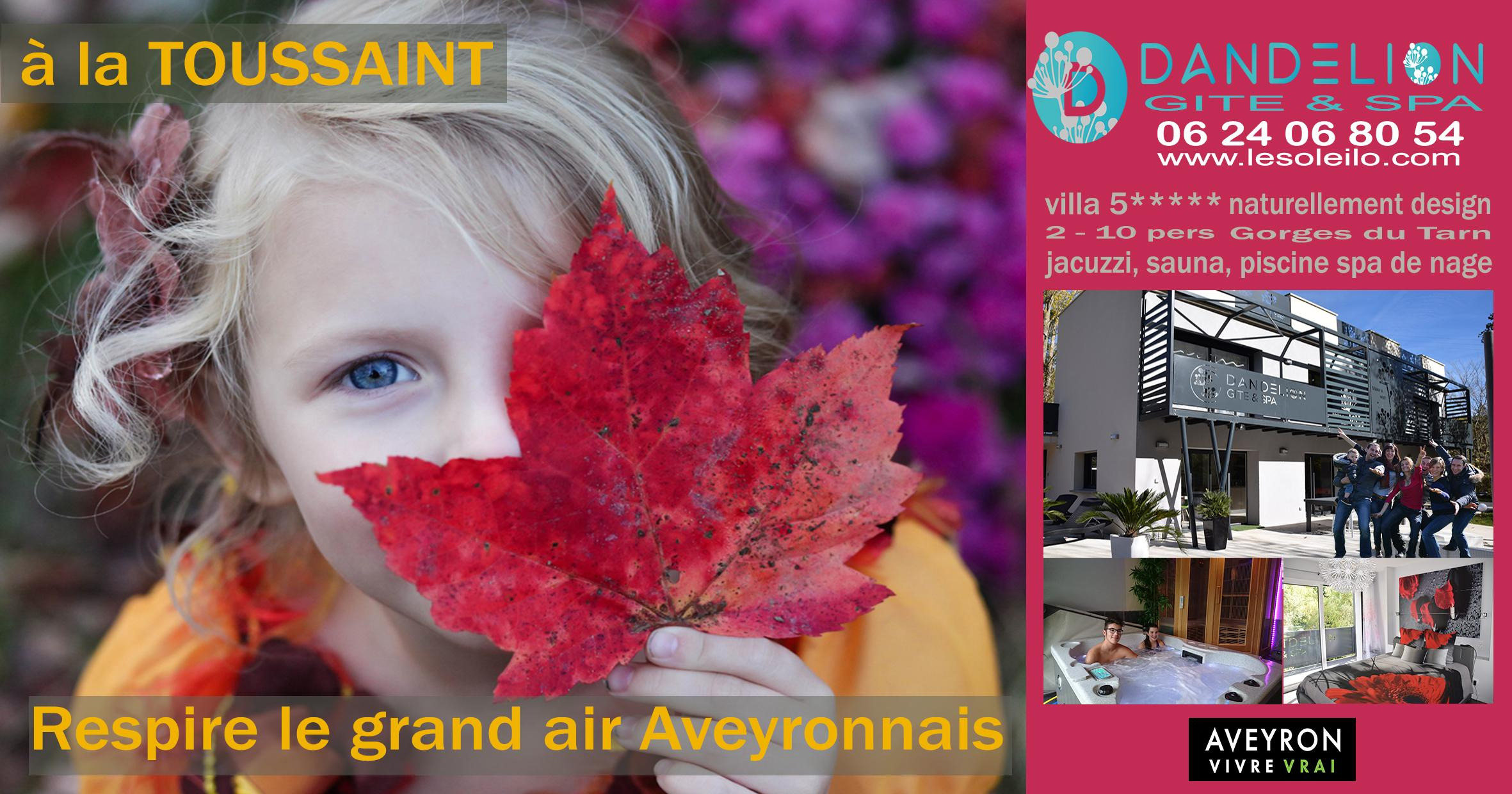 All Saints' Day holidays with family or friends and a stay well-being in a hot tub with jacuzzi in the Gorges du Tarn